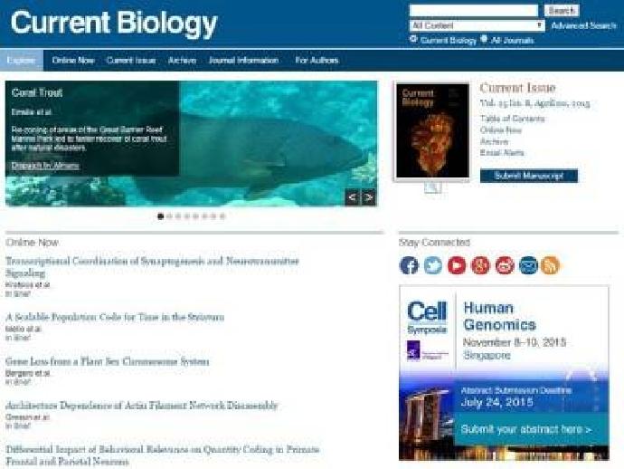 施奇廷教授研究腦連結體,獲刊《當代生物學》雜誌